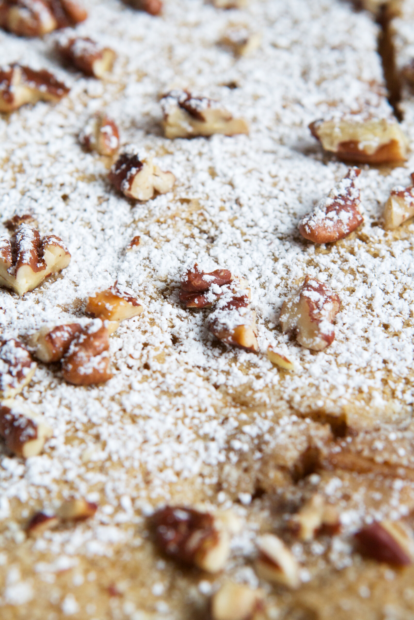 Close up photo of powdered sugar and nuts scattered on a puffed apple pancake