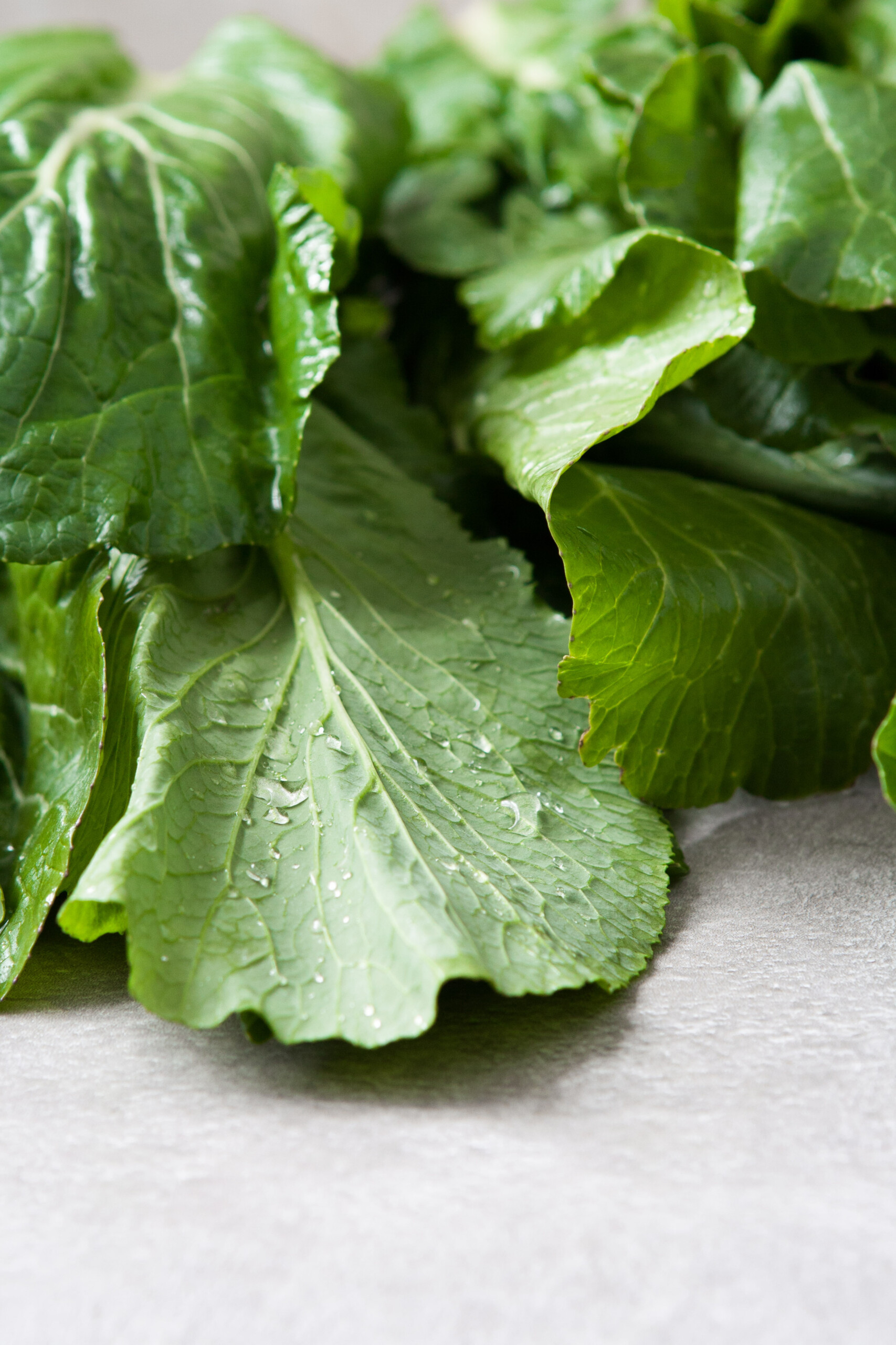 turnip greens with water droplets