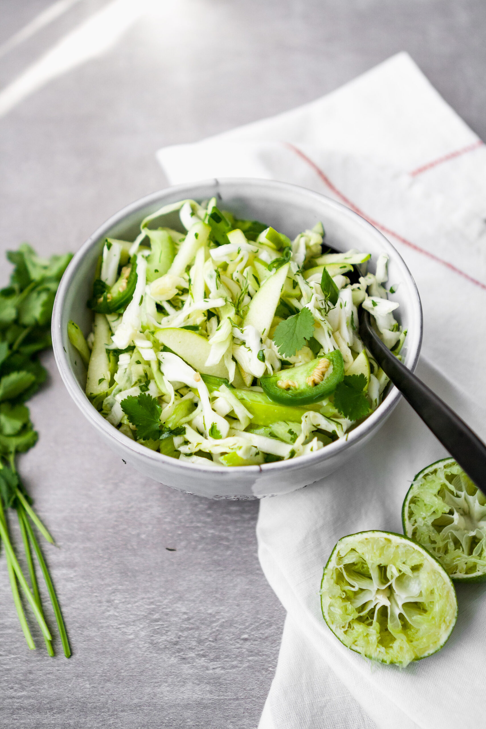 Simple and versatile, this vibrant green slaw makes a perfect side dish or addition to just about any meal. Packed with flavor from cilantro and dill, green apple, jalapeño, and more, this simple slaw is healthy, delicious, and refreshing. | from Lauren Grant of Zestful Kitchen
