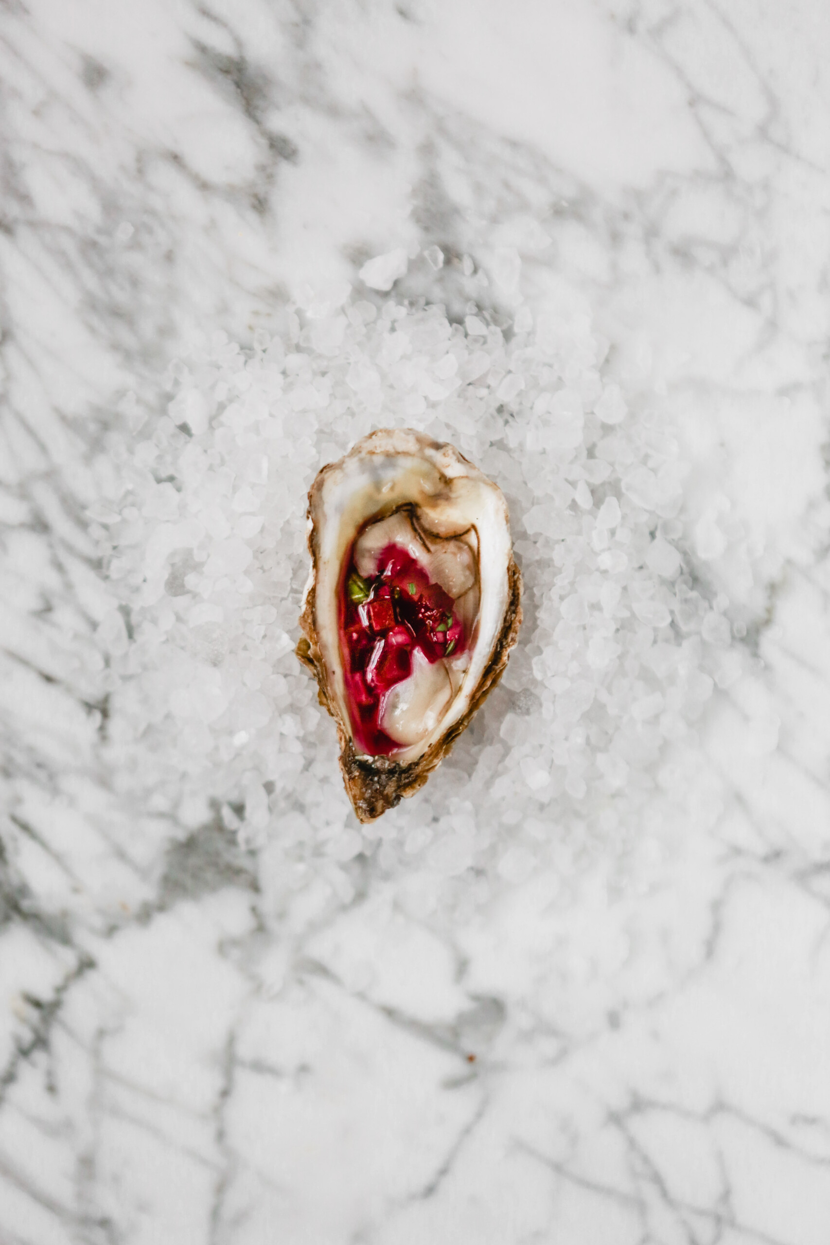 Photograph of one oyster on the half shell set on a bed of rock salt topped with a red mignonette