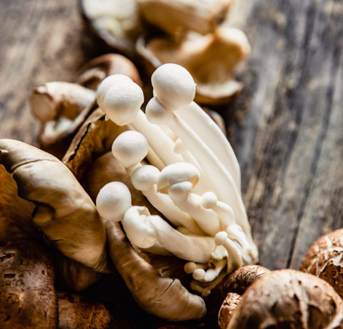 Close up image of white beech mushrooms on top of a pile of mushrooms on a wood board
