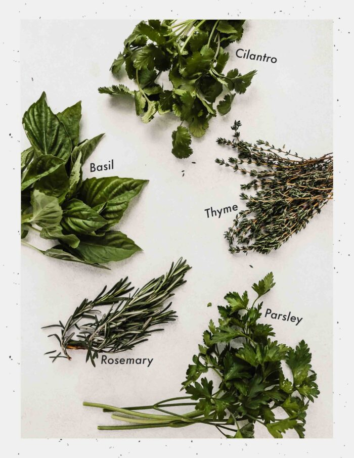image of herbs laying on a table with text labeling each herb
