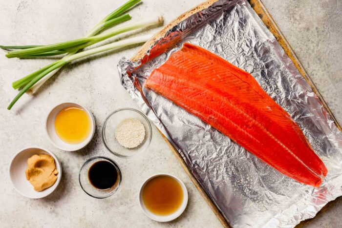 salmon, sauces, sesame seeds and green onions measured out on a counter