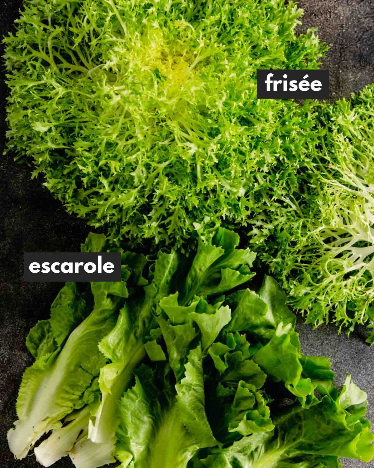 frissee and escarole set on a black table